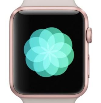 Apple Watch Reminders