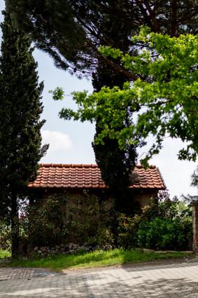 Weingut Castel Peter.jpg