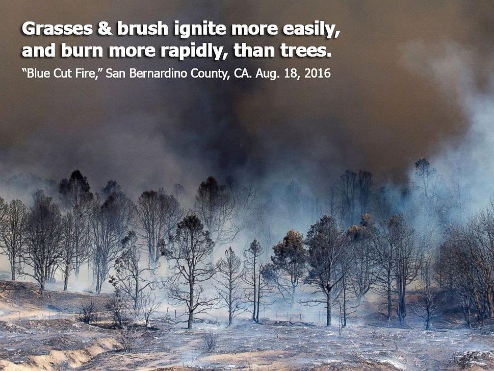 fire-Blue-Cut-2016-grasses-brush-burn-qu