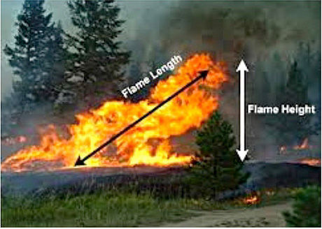 Flame-Length-vs-Height-HCN-newsletter-Se