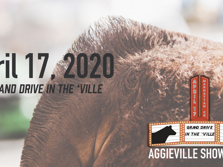 Aggieville Showdown Reschedules Prospect Cattle Show for 2021
