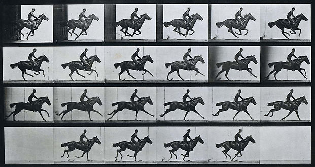 eadweard_muybridge_horse_gallop.jpg