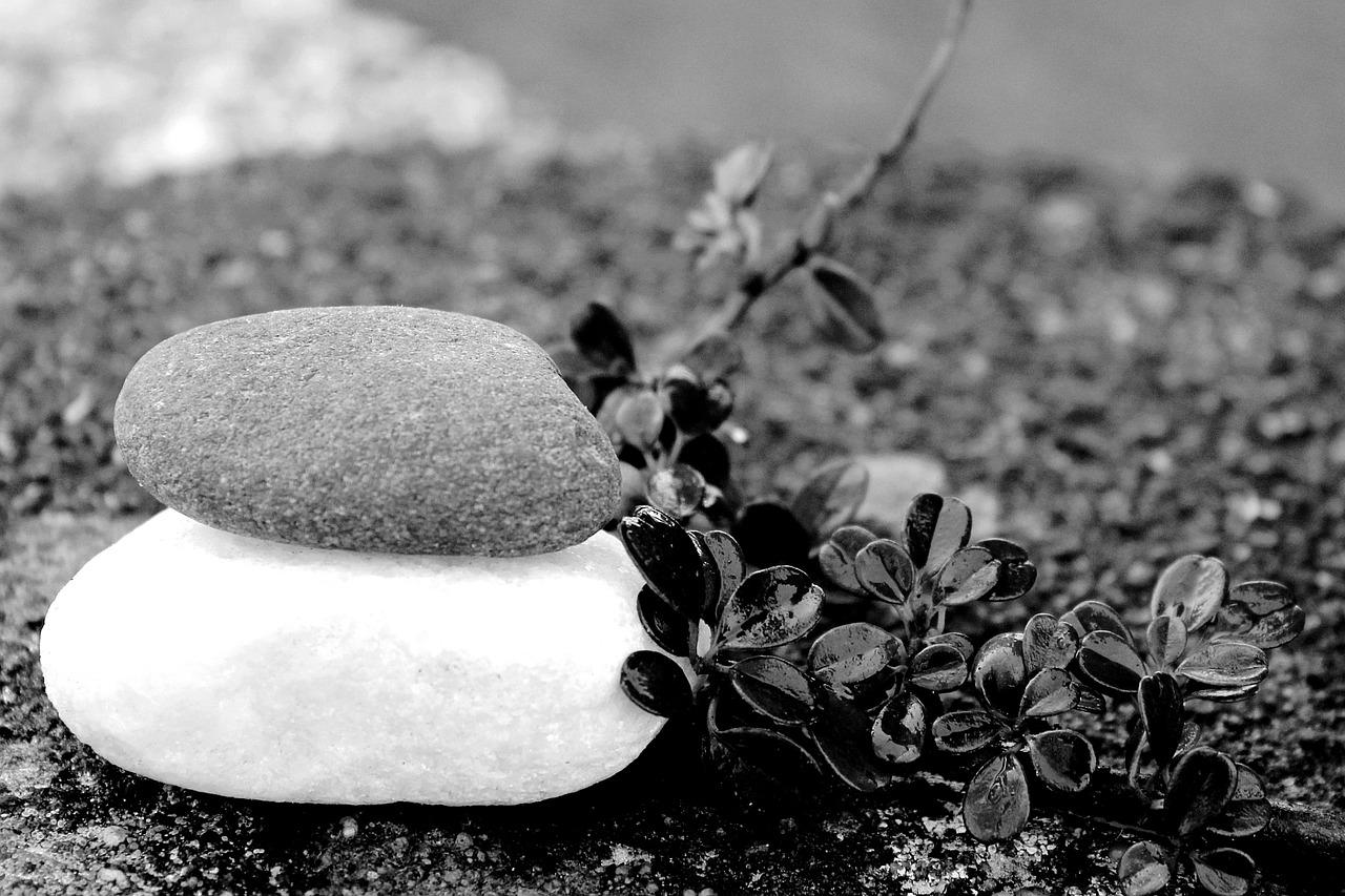 black and white stone flower