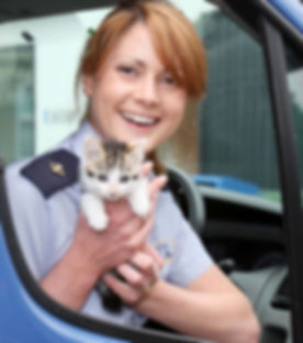 Lisa Kemp with Kitten in Van.jpg