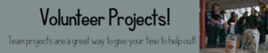 Team Projects.jpg