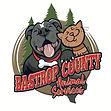 Bastrop Shelter Logo.JPG
