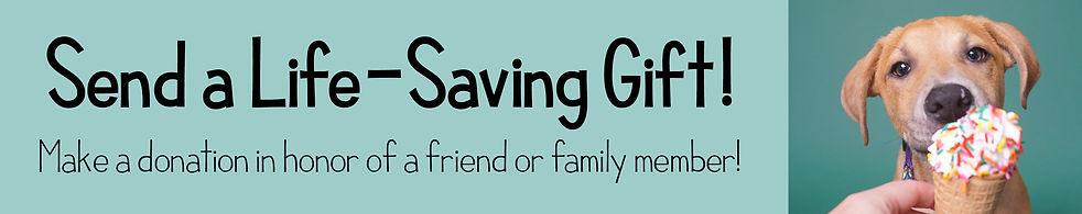 Gift Donation.jpg