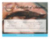 Adopt a Sturgeon Saginaw Bay certificate