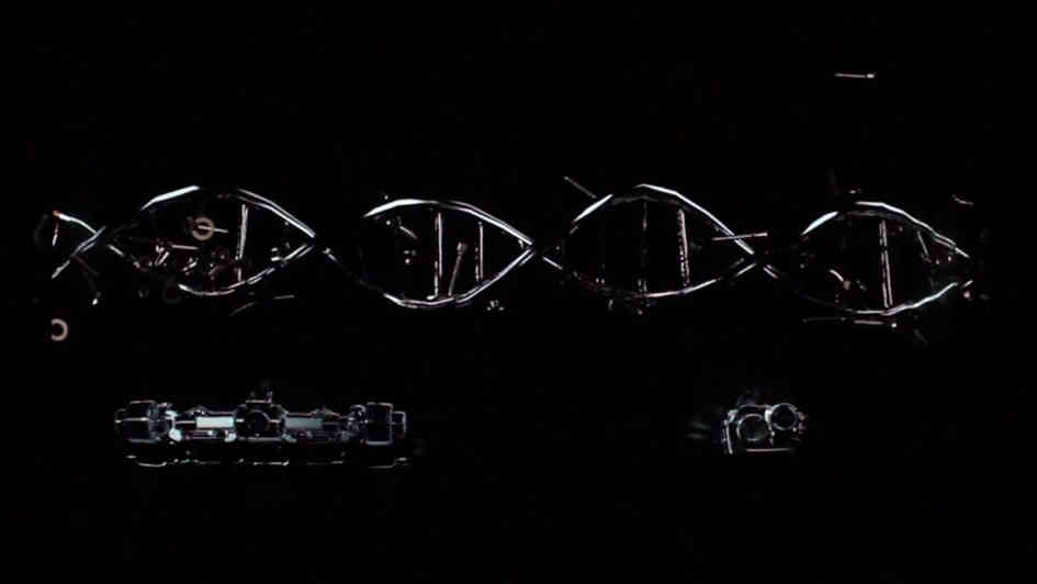 DNA 3.0