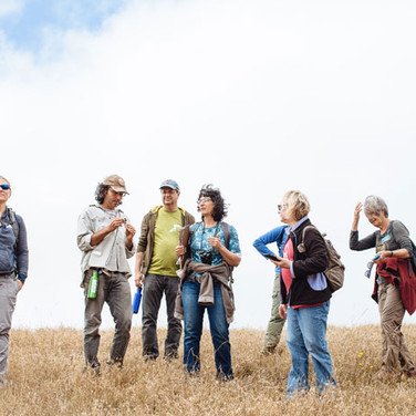 On a Now-Protected Ranch Above Tomales Bay, a Chance to 'Give the Land What It Deserves', Bay Nature Magazine