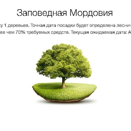 Посадим дерево вместе
