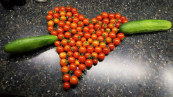 Organic cherry tomatoes grown with OceanSolution