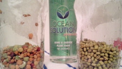 Spout with OceanSolution for more nutrition