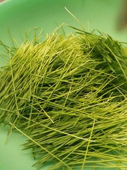 organic homegrown wheatgrass