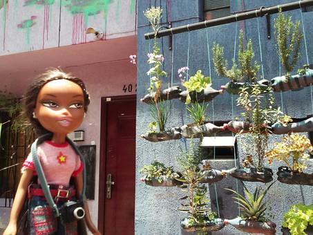 Agro Arte: planting seeds of Peace!