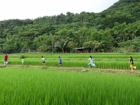Tamorak – Taiwan's First Amis School