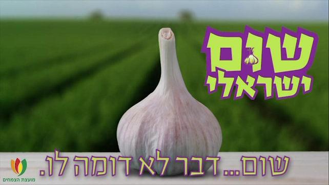israeli garlic.jpg