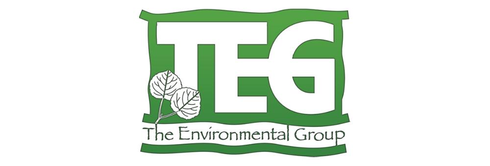 TEG     The Environmental Group