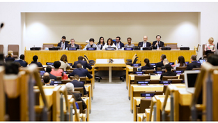 UN Treaty on the Prohibition of Nuclear Weapons (full text)