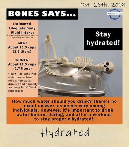 Hydrated_2.jpg