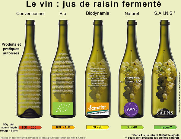 Vin italien, vin bio, vin naurel
