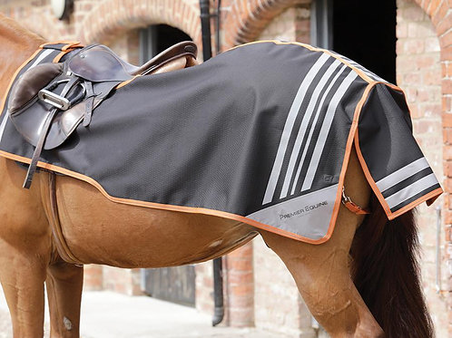 Stratus Horse Exercise Sheet - Black
