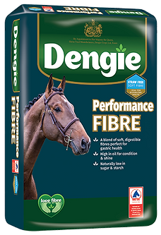 Performance_Fibre_LHS-with-EGUS.png