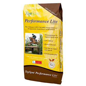 performance-lite-balancer.png