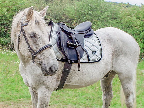 Lustre Saddle Pad - Shimmer