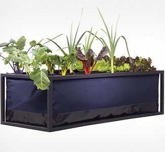 SMALL | Noocity Growbed