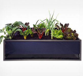 LARGE | Noocity Growbed