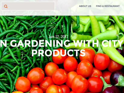 Modern Gardening with CityFoodProducts