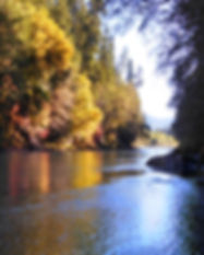 Blue_Heron_Lodge - River Pic2.jpg