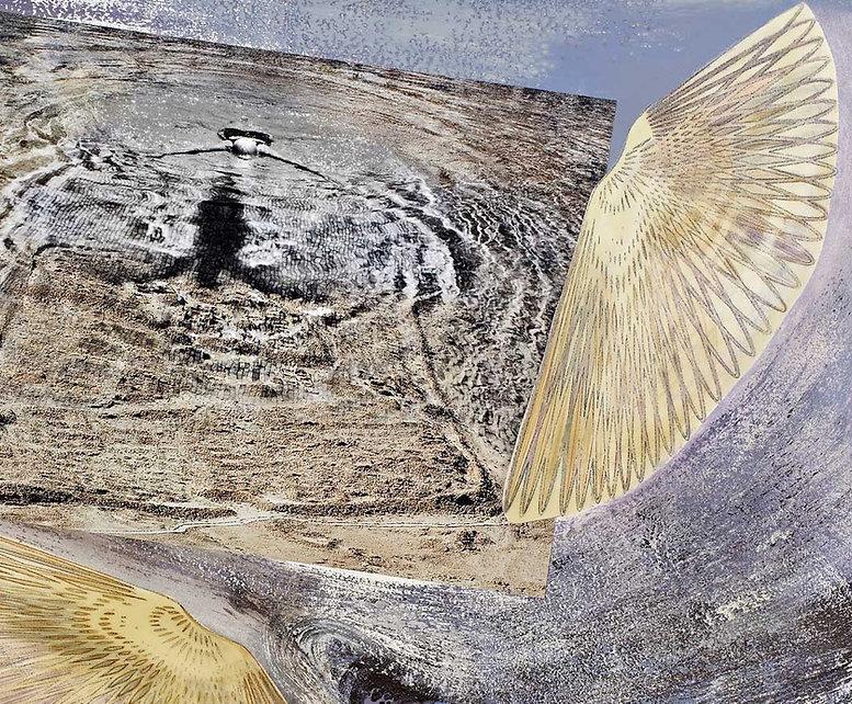 עוף-החול-מסדרת-גיאופילוסופיה-2014.jpg