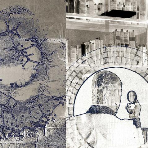 Seal - Genetic Blue Print