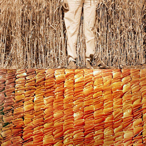 From the series 'Body Art' - Grains