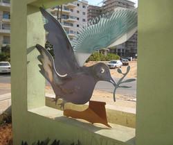 Dove-1-2009