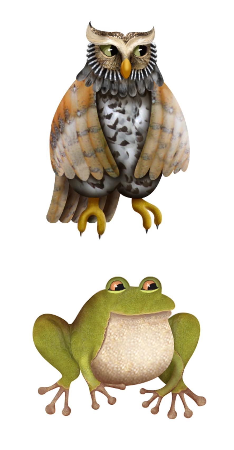 Owl & frog