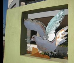 Dove-1b-2009