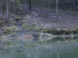 Bonaparte (rive suisse)