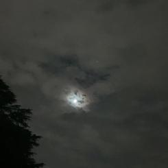 同じ月 The Same Moon