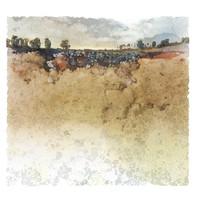 Terre de Cassel I 50x50 cm I © Réf: 59 I Tirages limités à 20 exemplaires.