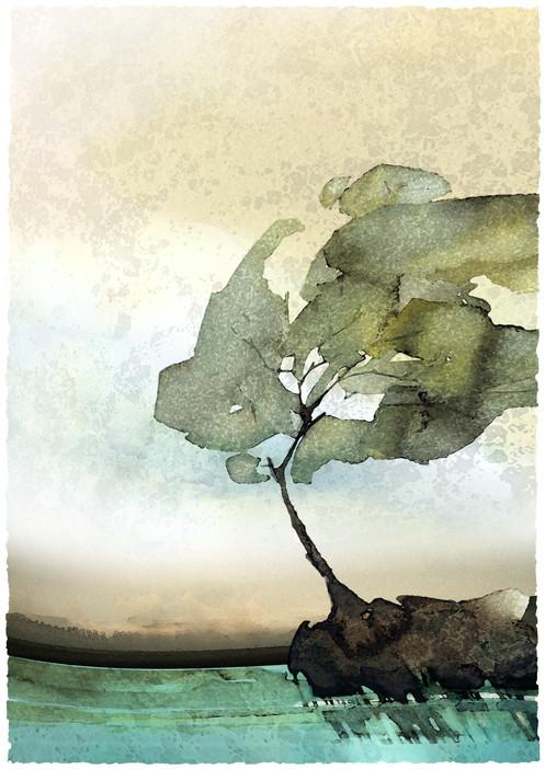 L'autre arbre 4 I 50x70 cm I © Réf: 41 I Tirages limités à 20 exemplaires.