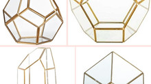 Geometry Terrarium in 10 Different Styles and Sizes