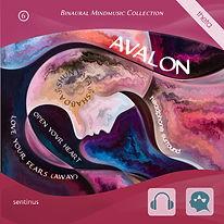 Avalon LYFA 1-2 away klein.jpg