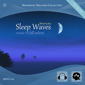 Sleep Waves - Shunyata