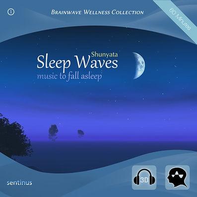 Sleep Waves - Shunyata