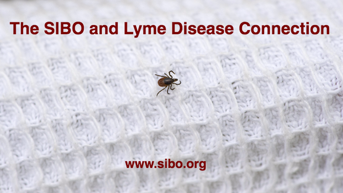 SIBO and Lyme Disease