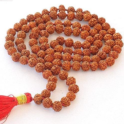 Rudraksha Japa Mala Beads