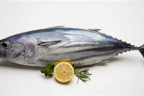 Tuna Fish(Toora Chepa)  Gross Wt:1KG     Net Wt:500gms